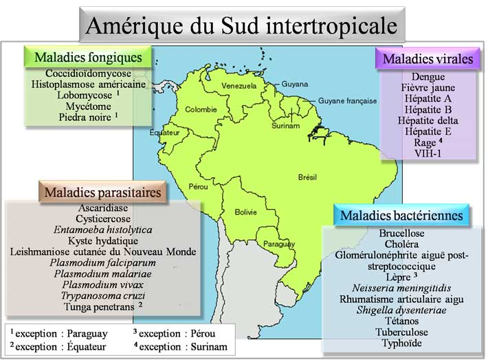 Pathologies d'Amérique du sud intertropicale